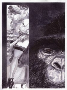 Le singe voyeur - Fabrice Meddour
